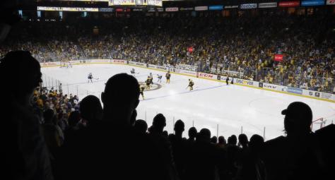 NHL 15 3
