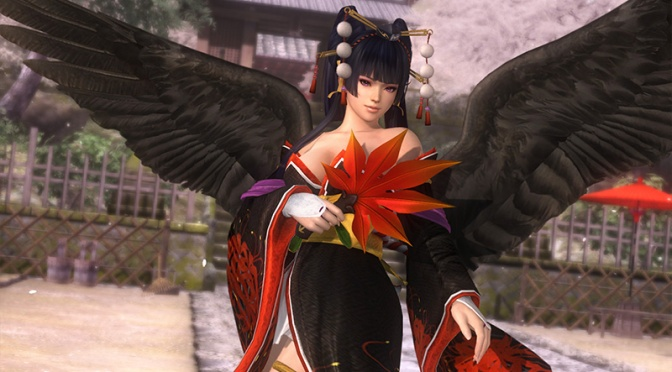 Release Date for New Dead or Alive 5 Ultimate DLC Character